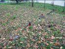 b_150_100_16777215_00_images_krakow_krakow384e.JPG